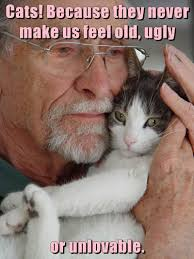 Cat Lover Meme - lolcats ugly lol at funny cat memes funny cat pictures with