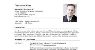 consultant medical doctor resume example academic resume sample