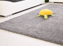 Frieze Rug Best Vacuum Cleaners For Carpets And Rugs Revealed