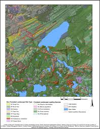 Wildfire Map Of Canada by University Of Alberta U2013 Tree Time Archaeology