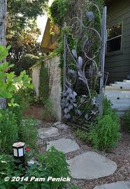 Backyard At Bee Cave Best 25 Bee Cave Ideas On Pinterest Bee Cave Texas West Texas