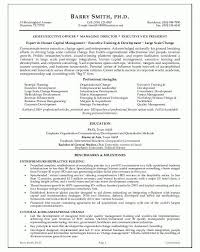 Senior Executive Resume Examples by Sensational Design Executive Resume Examples 1 25 Best Ideas About