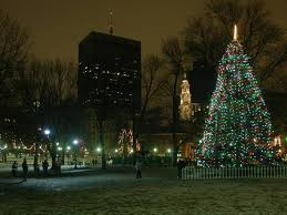 market commons tree lighting ceremony boston events to enjoy all year from festivals to holidays