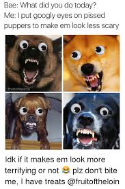 Googly Eyes Meme - bae what did you do today me put googly eyes on pissed puppers to