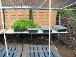 Ikea Hydroponics Garden Kratky U0027s Non Circulating Hydroponics 10 Steps With Pictures