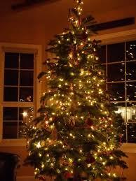 Outdoor Christmas Light Safety - christmas christmas lights outdoor ideas extraordinary holiday