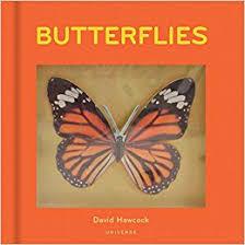 butterflies pop up david hawcock 9780789327642 amazon com books