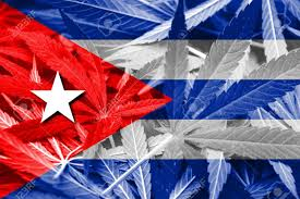 Cuban Flag Tattoos Cuban Law Stock Photos U0026 Pictures Royalty Free Cuban Law Images