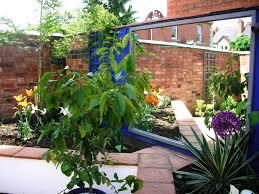 courtyard garden ideas fine courtyard garden ideas uk caterham on decorating