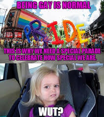Gay Pride Meme - the best pride memes memedroid