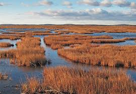 Massachusetts landscapes images The best photography locations in massachusetts loaded landscapes jpg