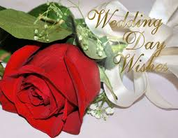 wedding wishes quotes for family wedding wishes happy wedding wishes johnson