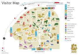 San Francisco Zoo Map by Mandrills Pictures Posters News And Videos On Your Pursuit