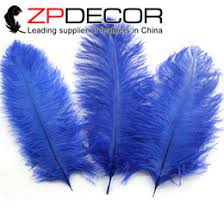 Ostrich Feather Centerpieces Wholesale by Discount Royal Blue Feather Centerpieces 2017 Royal Blue Feather