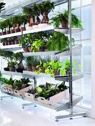 21 best super cool indoor garden ideas images on pinterest