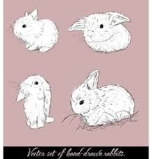 bunny sketch royalty free vector image vectorstock