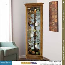 Curio Cabinet Corner Curio Cabinet Remarkable Mirrored Curio Cabinet Photo Ideas