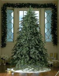 top 10 most popular trees at affordable prices