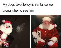 Christmas Dog Meme - 27 ridiculously happy dog memes to brighten your day blazepress