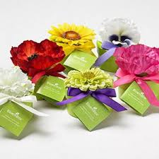 seed favors bloembox flower seed favors