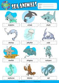 sea animals esl printable worksheets for kids 1