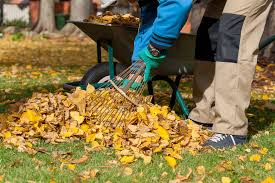 Fall Cleanup Landscaping by Fall Landscaping Ideas For This Weekend