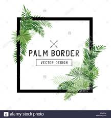 tropical palm leaf border vector summer palm tree leaves around a