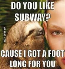 Sloth Meme Rape - rape sloth humor pinterest sloth sloth memes and humour