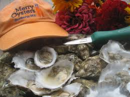 seabattical log 5 the merry oyster company an with don