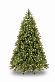 5ft pre lit bayberry spruce feel real artificial tree