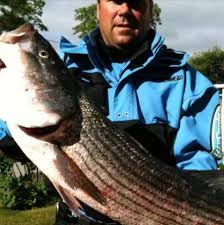 cape cod charter guys get quote fishing bourne ma 22