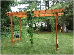 Pergola Backyard Ideas Backyards Trendy Backyard Trellis Ideas Backyard Pictures