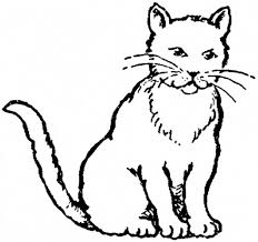 realistic cat coloring pages coloring free coloring pages