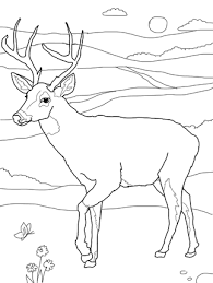 traditional native american thanksgiving coloring pages