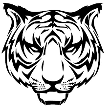 tiger design i like and it just says auburn wde