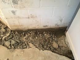Basement Leak Repair Toronto 58 Wet Basement Repair Cost Basement Waterproofing Cost Home