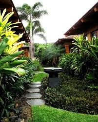 649 best tropical garden idea u0027s images on pinterest tropical