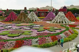 45 photos of the amazing dubai miracle garden dubai travel blog