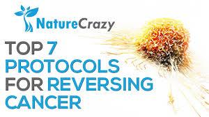 nature crazy u0027s top 7 protocols for reversing cancer youtube