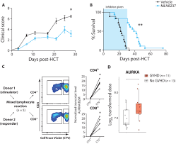 Map Testing Scores Transcriptome Analysis Of Gvhd Reveals Aurora Kinase A As A