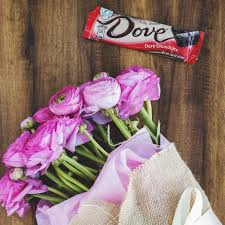 best s day chocolate 32 best s day images on dove chocolate diving