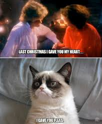 Grumpy Cat Memes Christmas - last christmas cat memes grumpy cat and grumpy cat christmas
