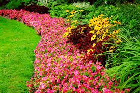 spring landscaping professional spring landscaping in midwest city riemer and son
