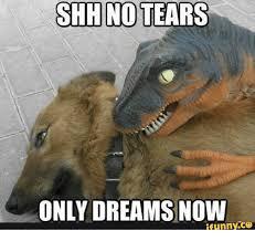 Shh Meme - shh no tears only dreams now ifunnyco shh meme on me me