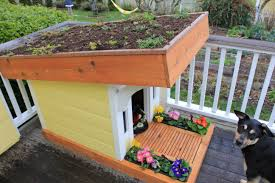 Sweet 8 Green Roof Dog House Plans Roof Homepeek