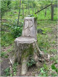 Pictures Of Tree Stump Decorating Ideas 28 Best Tree Stump Ideas Images On Pinterest Tree Stumps