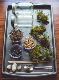 10 diy mini fairy terrarium garden ideas and projects fairy