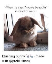 Blush Meme - when he says you re beautiful instead of sexy piqasso blushing bunny