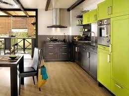 cuisine mur vert pomme cuisine mur vert pomme placarts vert cuisine mobalpa cuisine avec