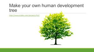 Define Tree Learning Objective To Be Able To Define Hdi And Marginalisation